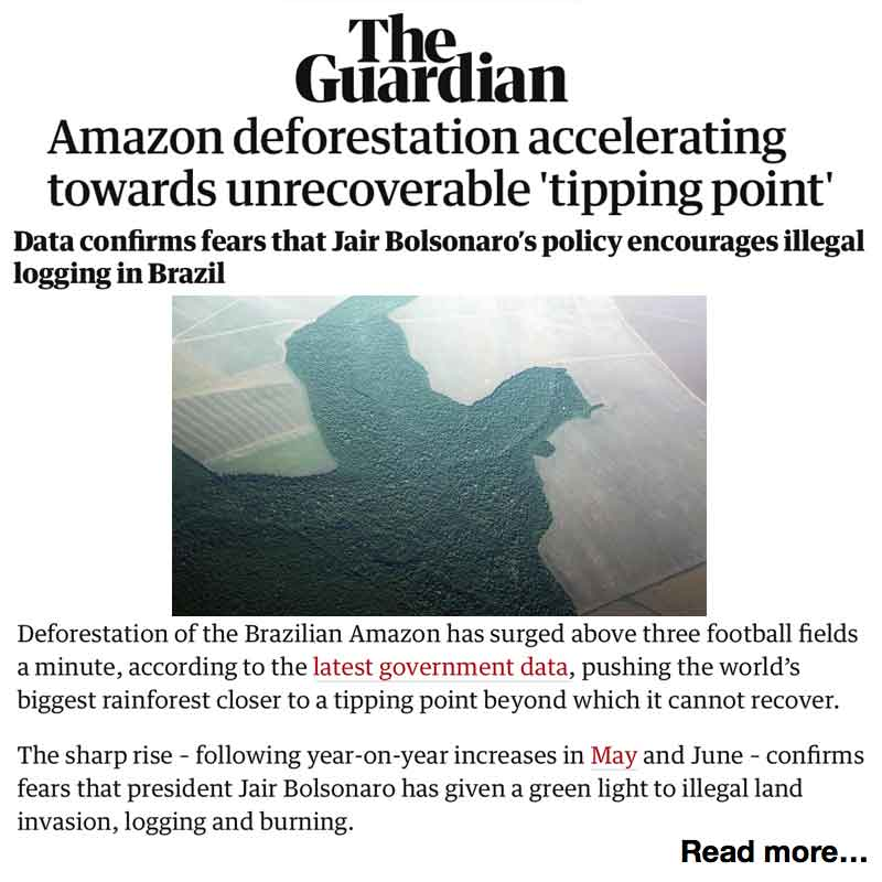The Guardian Amazon deforestation accelerating towards unrecoverable 'tipping point'