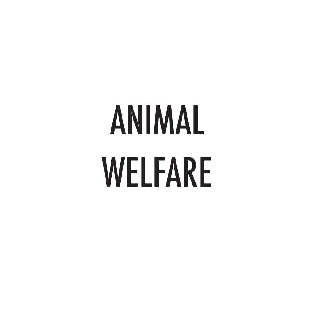 CHECK-MARKS-ANIMAL-WELFARE