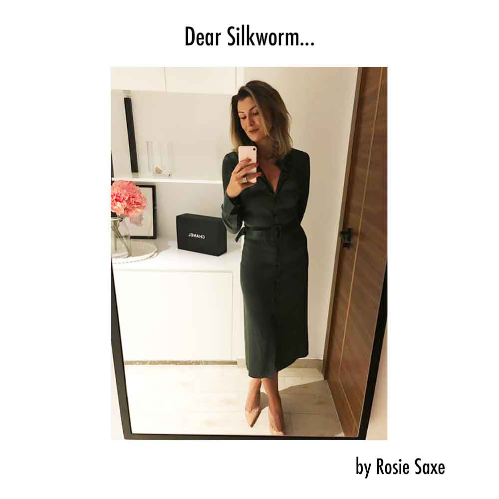 Dear Silkworm by Rosie Same good fashion guide ECOLOOKBOOK
